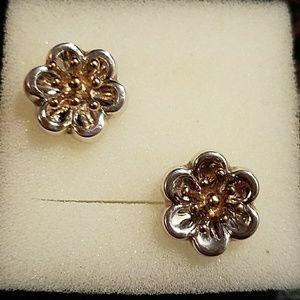Jewelry - STERLING SILVER EARRINGS & JACKET